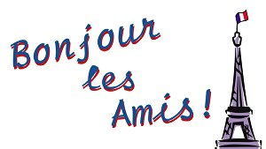 I will write French articles for your blog or website