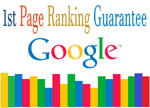 I will provide You monthly  Google top ranking SEO service