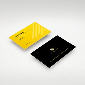 I will provide professional business card design services