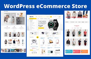 I will build ecommerce online store or business website