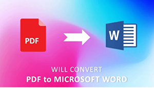 I will convert PDF to word, pdf to excel, copy paste, data entry
