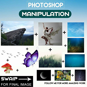 I will do photo manipulation for you