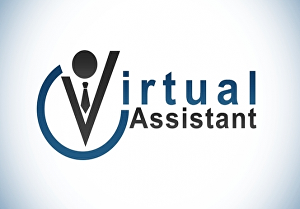 I will be your professional virtual assistant