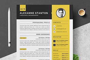 I will design and edit a professional CV