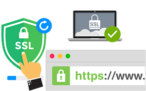 I will  install SSL certificate on website