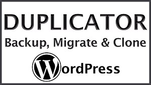 I will clone, move, copy or duplicate any website into WordPress
