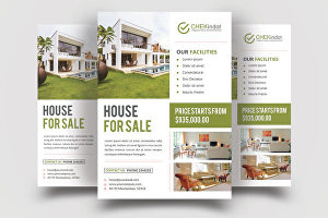 I will design  Real Estate Flyer