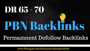 I will Create 5 High Quality DR 65 Plus  Seo PBN Backlinks For Fast Ranking