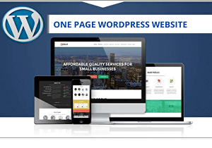 I will create one page WordPress website for business