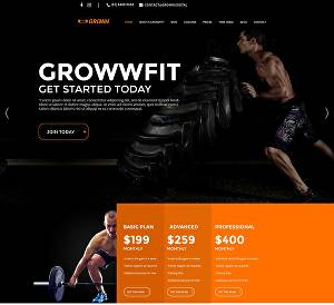 I will create professional website using Wordpress DIVI with lifetime license