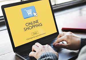 I will develop professional ecommerce online shop website