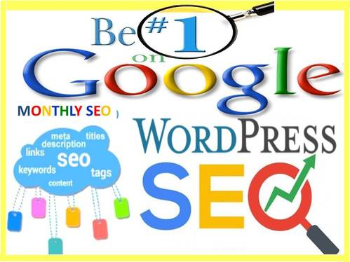 provide on page SEO service for website ranking