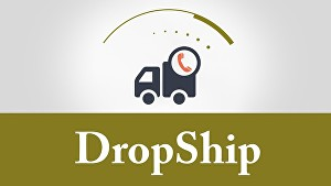 I will Show You How to Master Dropshipping Business