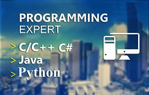 I will do python, java, c, cpp, php tasks and projects