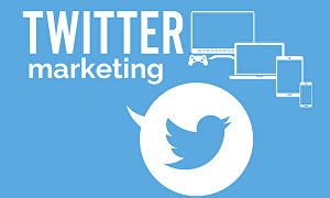 I will Show you How to Dominate Twitter Marketing