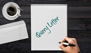 I will write a perfect query letter for an agent or publisher