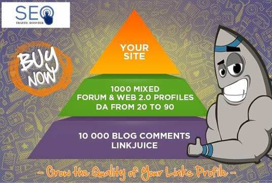 create  a Backlink Pyramid 1000 Link Plus EDU Links as Bonus