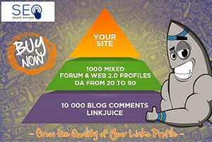 I will create  a Backlink Pyramid 1000 Link Plus EDU Links as Bonus