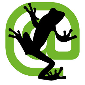 I will run a screaming frog crawl and SEO audit on your website