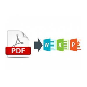 I will convert PDF to Excel Spreadsheet or word document