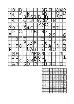 I will make you 300 never been published 16x16 Hex Sudoku puzzles and solutions