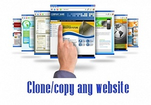I will clone, duplicate, transfer or redesign an existing website