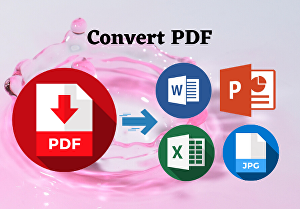 I will covert PDF to word or excel