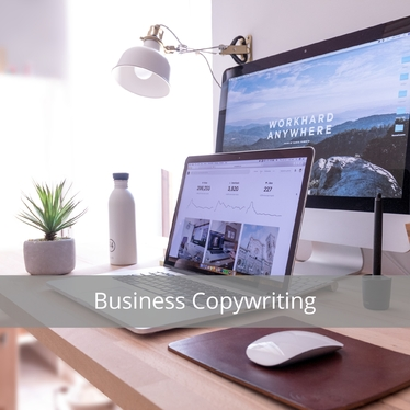 write up to 100 words of original content for your business