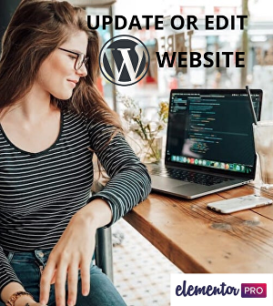 I will update or edit and optimize your WordPress website quickly