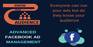 I will create and manage your Facebook video ads campaign in business manager