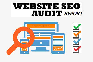 I will Provide You Complete Website SEO Audit Report