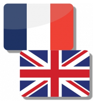 I will translate any topic from English to French