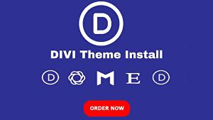 I will install premium Divi theme with an API key for lifetime updates