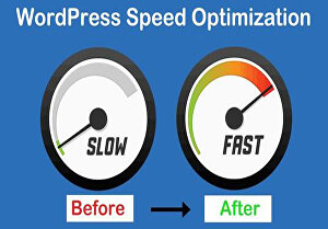 I will optimize your WordPress website speed