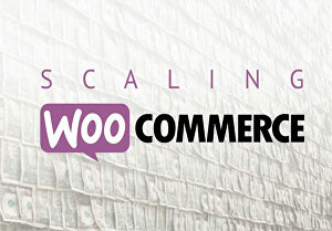 I will create a professional WooCommerce website
