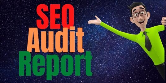 provide exclusive SEO audit report with plans to execute