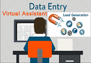 I will do Lead generation, Data Entry, Copy Typing, Web Research, Email Marketing as Virtual Assi