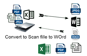 I will convert scanned file to word