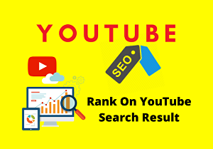 I will do 100% Best YouTube SEO Service