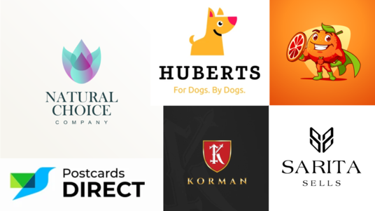 Design a Professional Logo Design or Redesign Existing