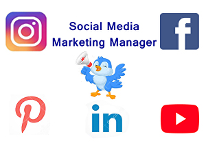 I will be your social media marketing manager, facebook, instagram, twitter, pinterest, linkedin,