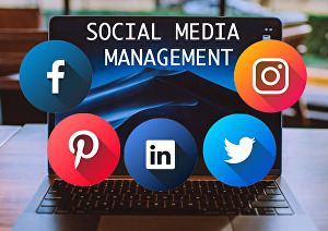 I will professionally  create or manage your social media accounts