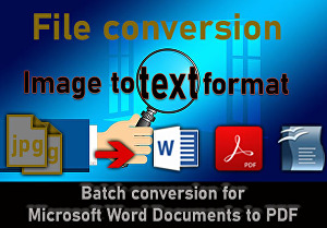 I will convert scanned images to editable text format