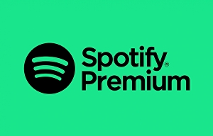 I will do Spotify promotion to your Spotify monthly listeners