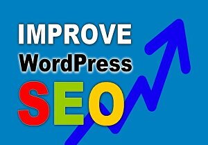 I will do the best On-Page and Off-Page SEO for your WordPress website