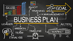 I will prepare financial model, business plan, projections and financial plan