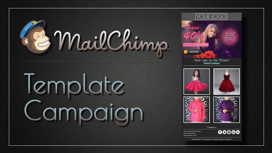 do professional MailChimp email template