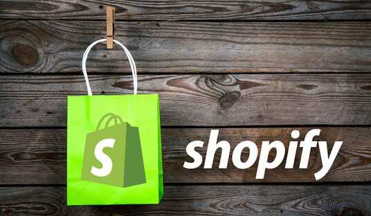 professionally design and set up your Shopify website store