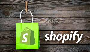 I will professionally design and set up your Shopify website store