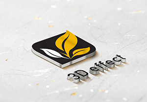 I will put your logo on 3d mockups in 6 different styles